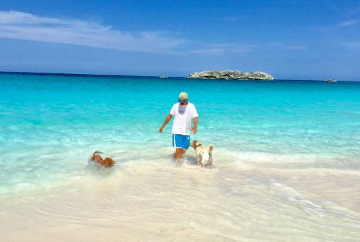 reason to love Compass Cay - A beautiful beach with a man and two dogs