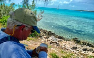 Sea turtles Exuma Bahamas